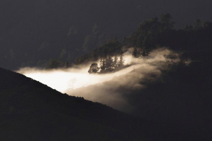 Mist in the Hutt Valley