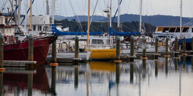 Seaview Marina Reflections
