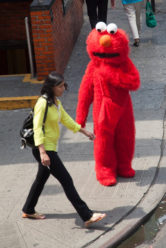 Elmo weighs his chances