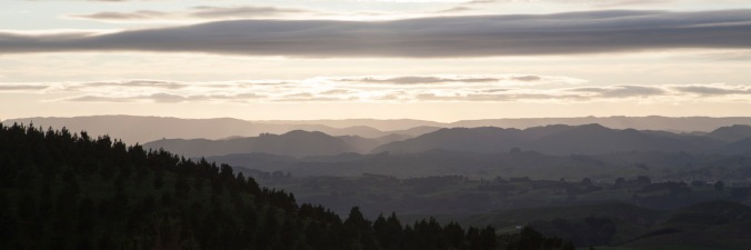 Eastward across the Wairarapa from the summit of the Pahiatua Track