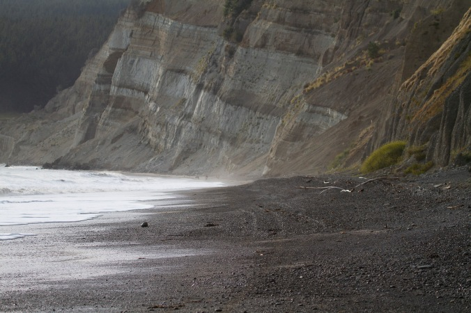 Stunning geology near Cape Kidnappers