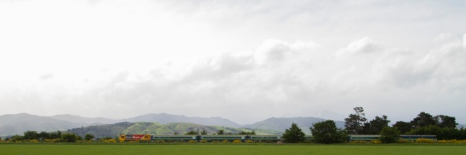 Wairarapa landscape