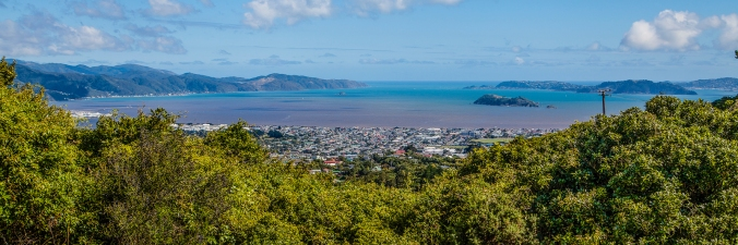 Wellington Harbour from Normandale Rd