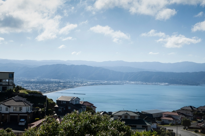Petone and the harbour from Newlands