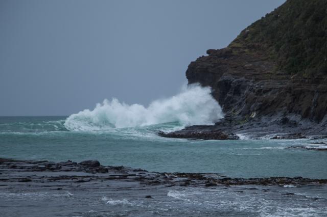 Surf at Curio Bay