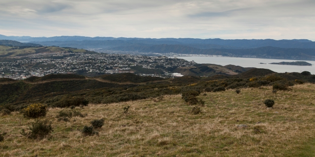East towards the lower part of the Hutt Valley