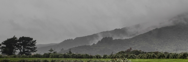 The Eastern Hills of the Hutt Valley in the rain