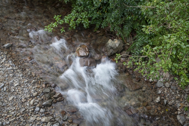 A rushing stream somewhere in the Akatarawas