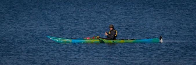 Kayaker at Pauatahanui