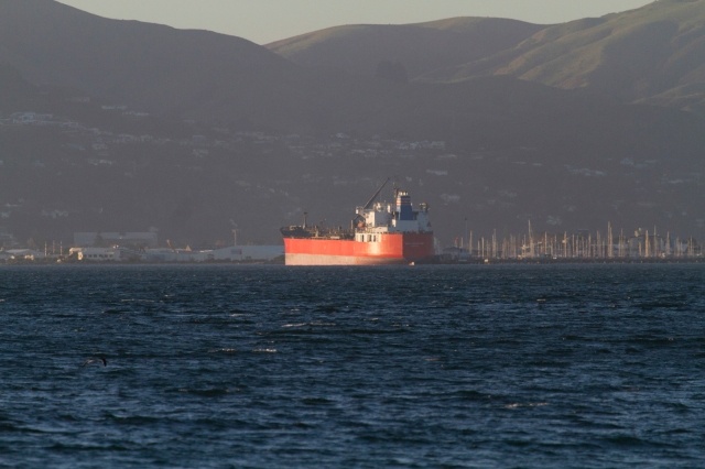 Tanker in the evening