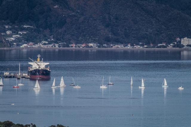 Awaiting the start of a yacht race - Point Howard