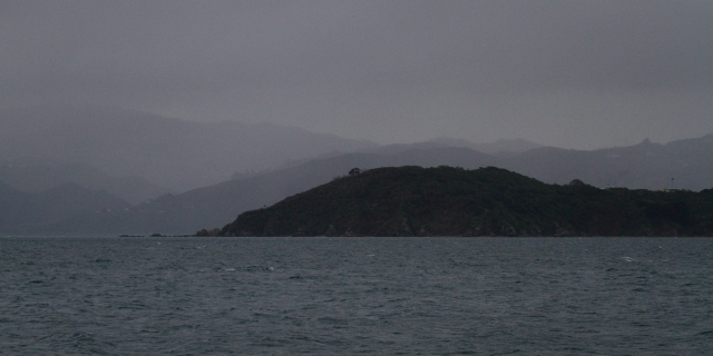 Wellington hills through the drizzle