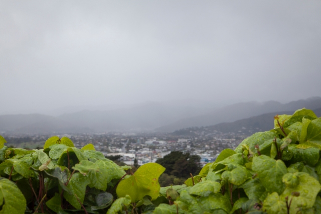 A moist view to the East across the Hutt Valley