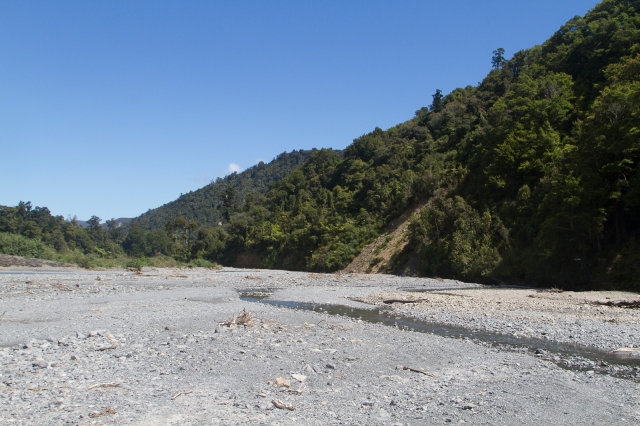 Down on the shingle beds at the Orongorongo river
