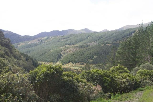The Rimutaka ranges