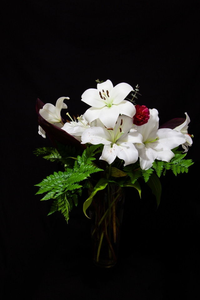 The last of the lilies