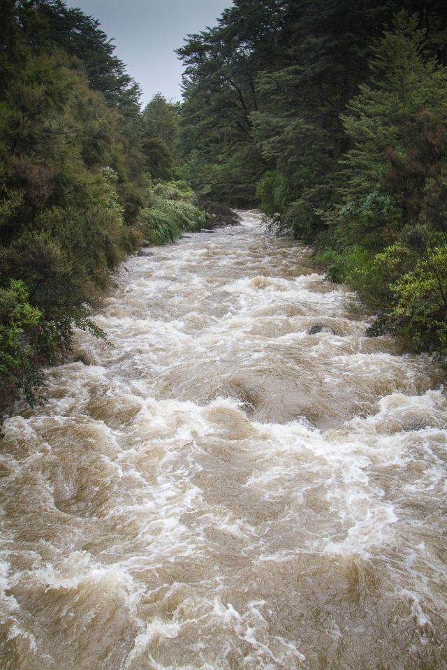 Oturere Stream in flood
