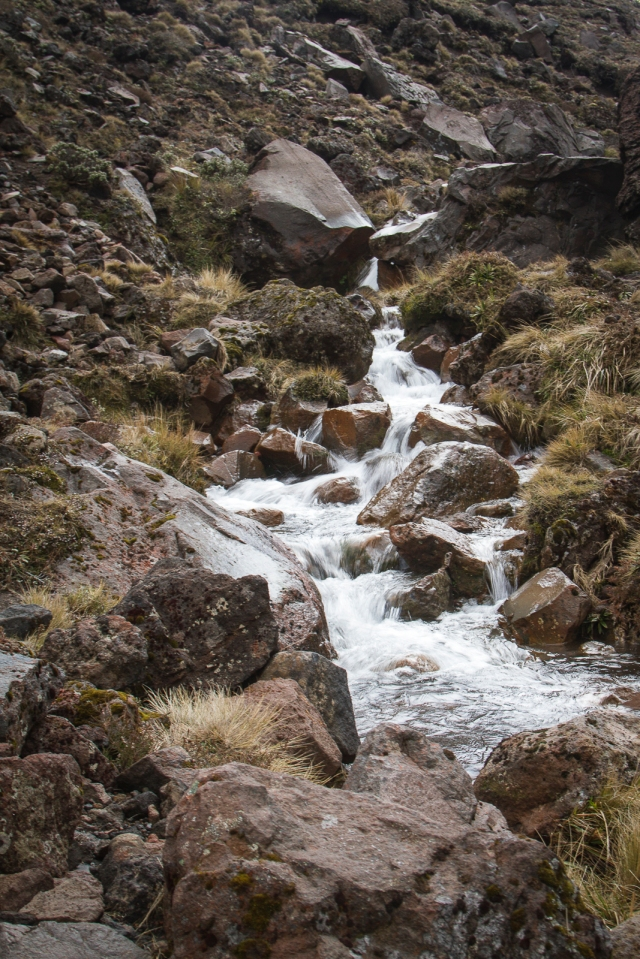 At least in the lower parts of the track (below Soda Springs) there are plentiful streams