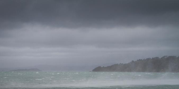Evans' Bay squall