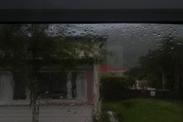 Back door outlook