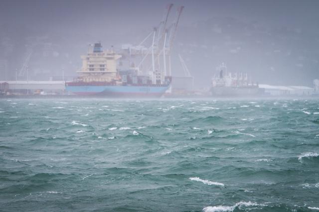 Oluf Maersk and Tequila Sunrise