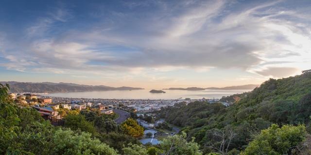 Wellington Harbour from Maungaraki