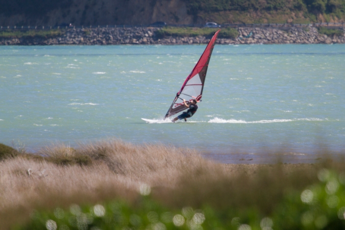 A windsurfer at Pauatahanui