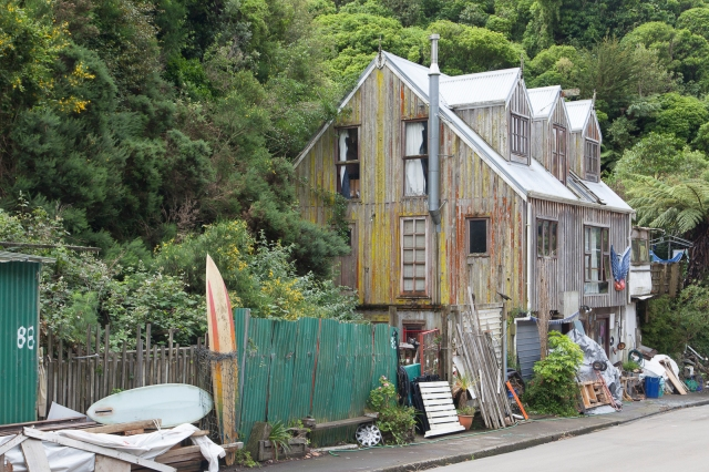 Aro Valley houses