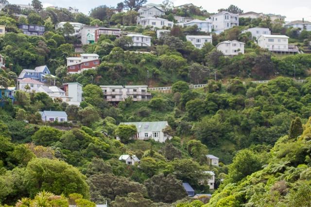 Aro Valley, Wellington
