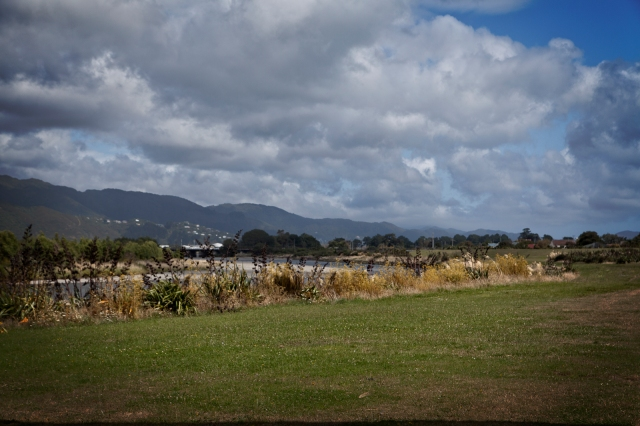 Hutt Riverbank