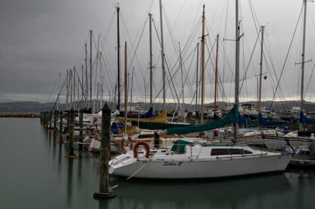 Marina in the rain