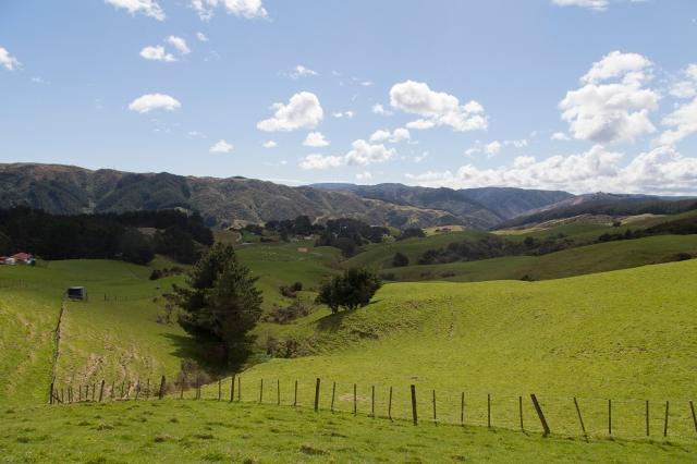 Moonshine valley