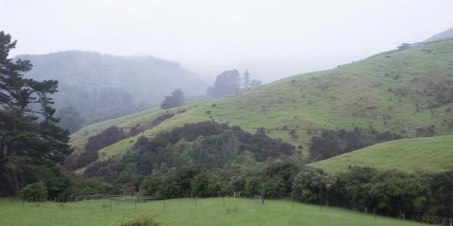 Wet landscape