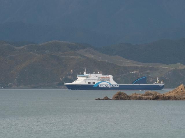 Strait Feronia