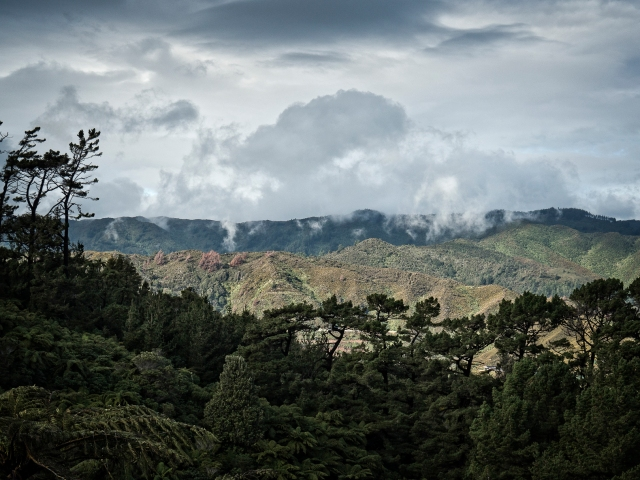 Eastern hills