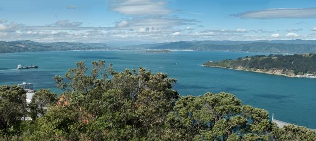 Mt Vic