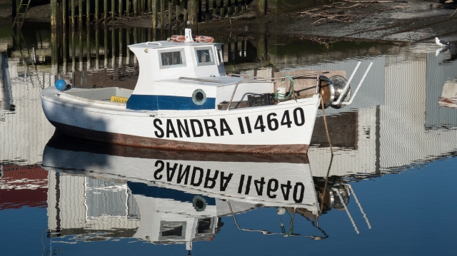 Sandra II