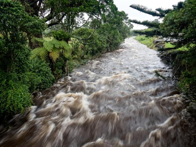 Kaihihi Stream