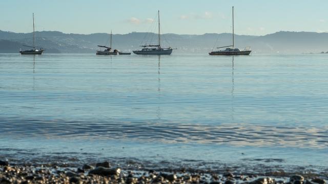 Lowry Bay