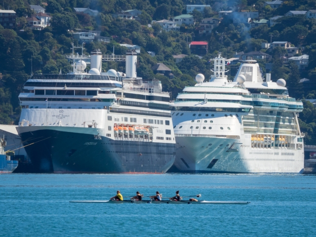 Cruse liners