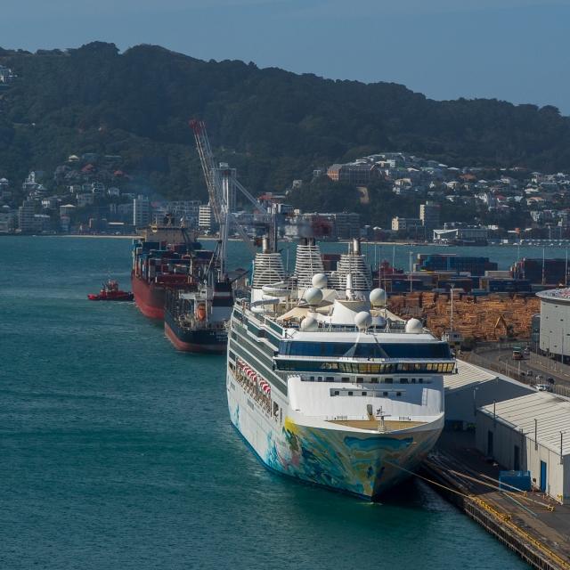 Cruise liner in Wellington
