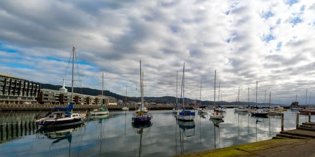 Northward view across Oriental Bay Marina