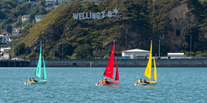 Evans Bay yacht race